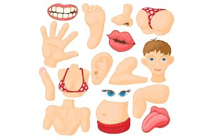 Human body parts icons set