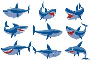 Vector swimming angry shark