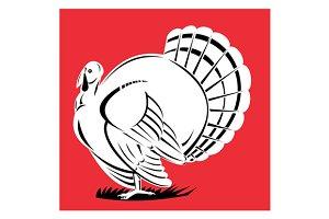 Turkey Retro