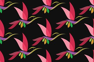 Hummingbird vector art background.