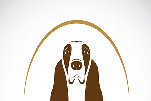 Vector image of basset hound. Dog