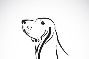 Vector image of a basset hound head.
