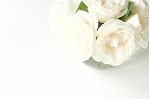 CLEAN! White roses for you