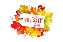 Autumn sale poster, discount