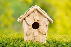 New Wooden Birdhouse outdoors
