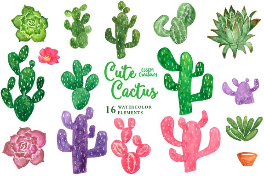 Cactus boho. Watercolor clipart illustrations creative