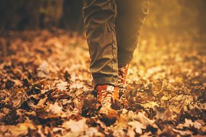 Feet sneakers walking on fall leaves