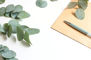 CLEAN! Eucalyptus workspace