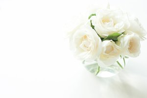CLEAN! Roses bouquet on white