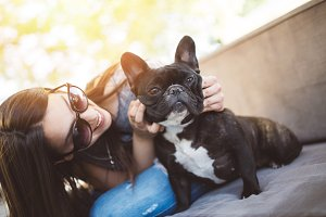 French bulldog urban outdoor