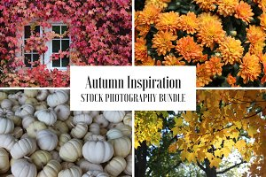 Autumn Inspiration - 6 Stock Photos