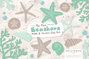 Seashells Clipart in Mint