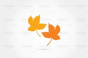 Maple leaves logo