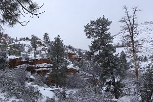 Snow covered Zion Canyon in Utah