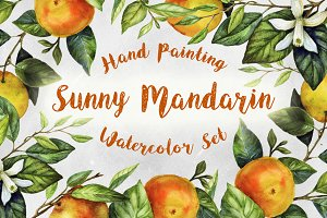 Sunny Mandarin Watercolor Set
