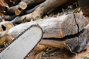 carpenter use Saw blade