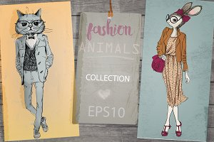 Fashion Animals Collection