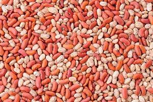 Pinto and Red Kidney Beans