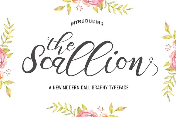 Scallion Script Fonts Creative Market