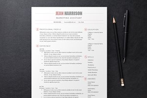 Sleek Resume 3 Templates