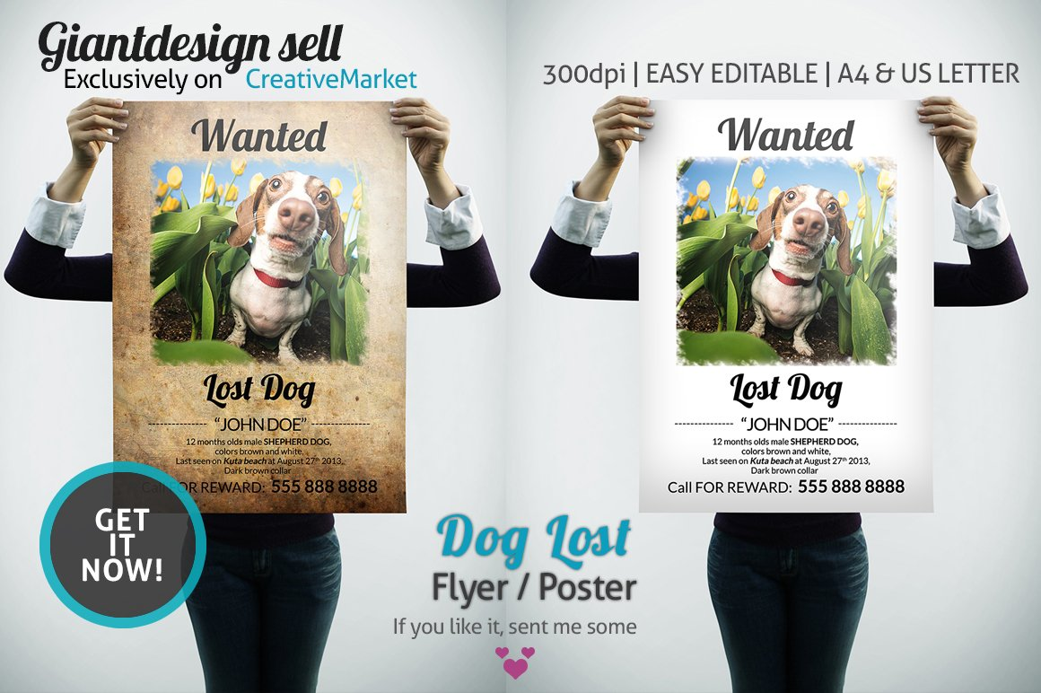 Dog Lost Flyer | Poster ~ Flyer Templates ~ Creative Market