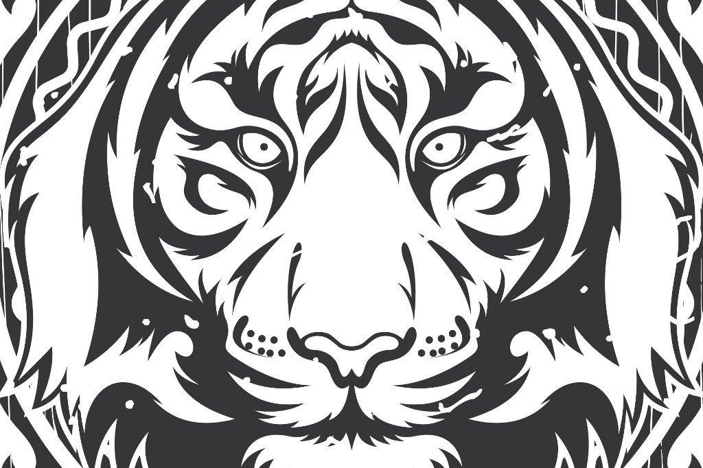 tiger vector frame illustrations creative market
