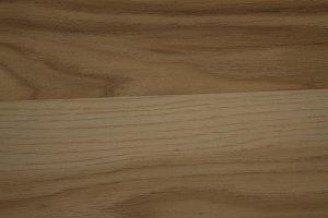 Wood texture photo XII