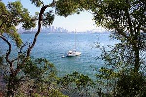 Sailing boat in Sydney harbour