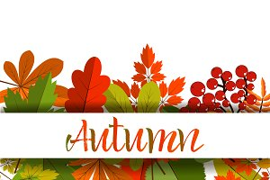 White blank on autumn leaves vector