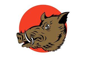 Wild Pig Boar Head