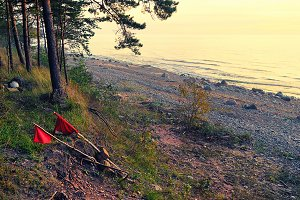 Red. Baltic sea. Latvia