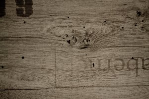 Wood texture photo XIX