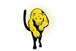 Puma Jumping