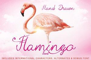 Hand Drawn Flamingo Font