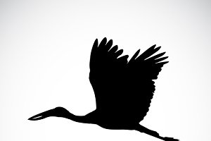 Vector silhouettes of stork flight.