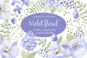 Violet flowers.Watercolor collection
