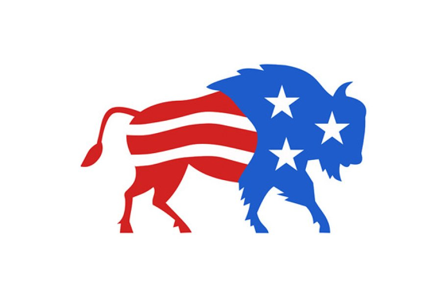 Bison Are Ready For Thanksgiving >> North American Bison Usa Flag Retro