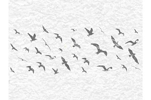 Grunge flying birds silhouettes