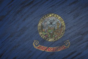 Idaho state flag.