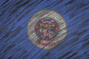 Minnesota state flag.