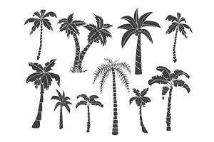 Hand drawn palms trees silhouettes