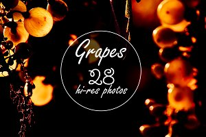 Grapes - Ultimate Photo Pack