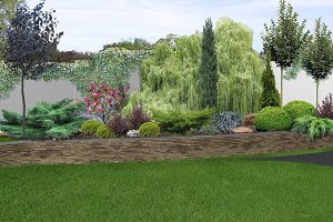 Patio horticultural background