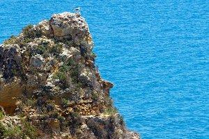 Atlantic rocky coastline