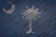 South Carolina state flag.