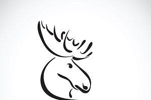 Vector of moose deer head