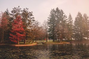Mystic autumn morning by the lake