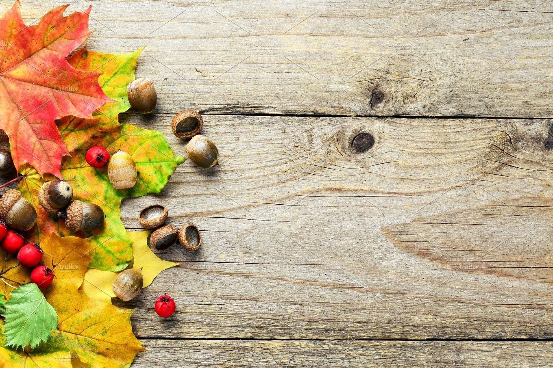 autumn leaves on wooden backdrop nature photos creative market