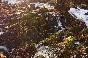 waterfall in misty autumn forest