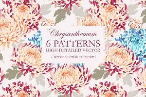 Chrysanthemum Patterns